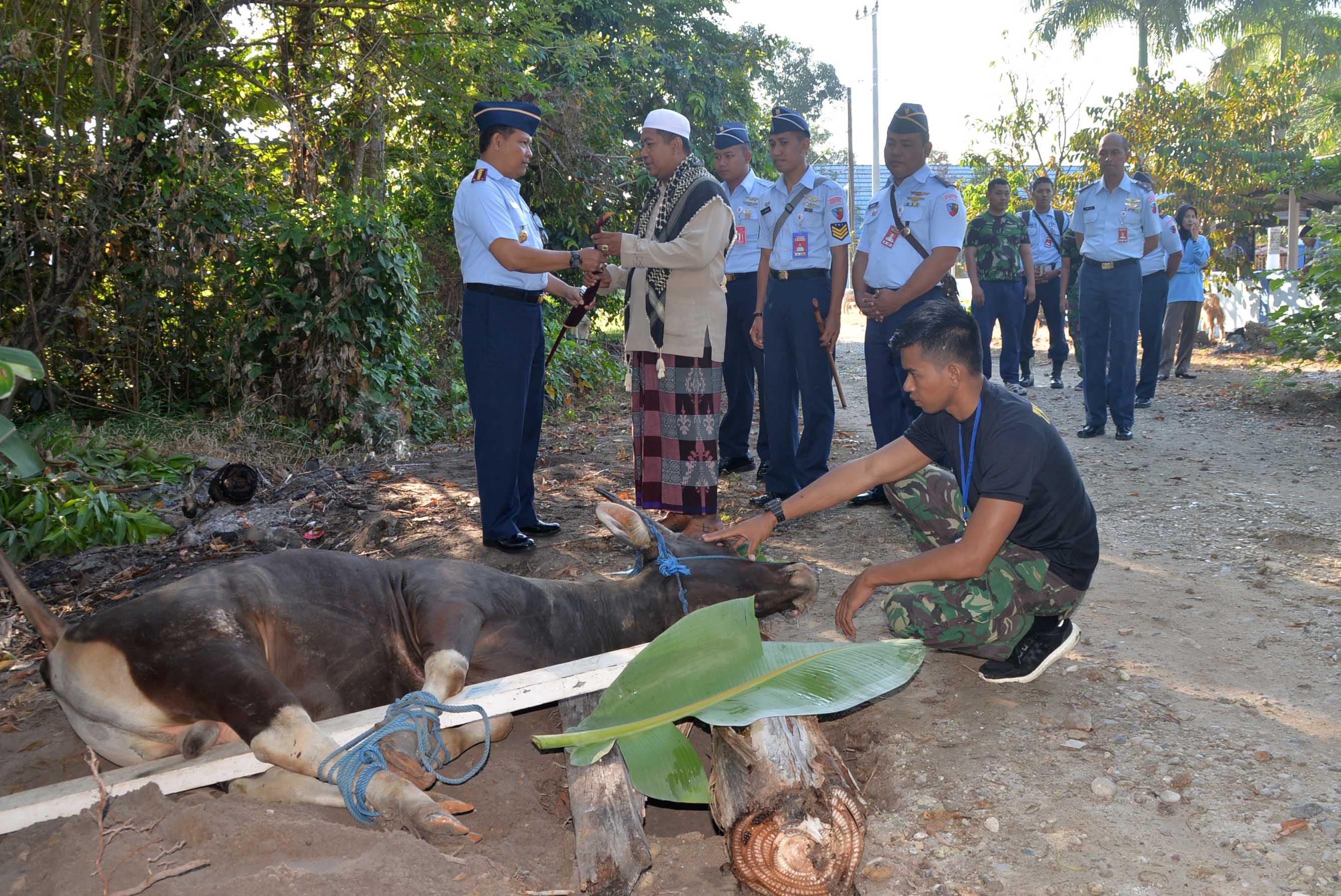 Penyerahan dan Pemotongan Hewan Kurban di Lanud Sjamsudin Noor