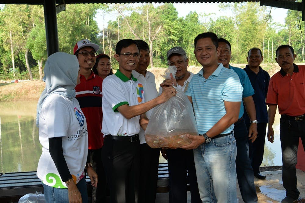 100 Ribu Benih Ikan Nila ditebar di Kolam Kosekhanudnas I