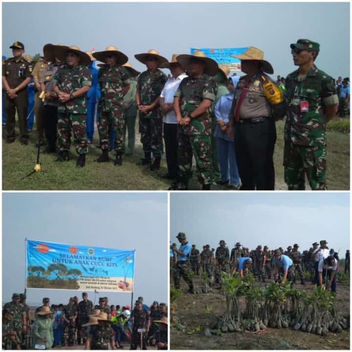Danlanud Soewondo Ikut Melaksanakan Penanaman Pohon Mangrove di Desa Bagan Serdang