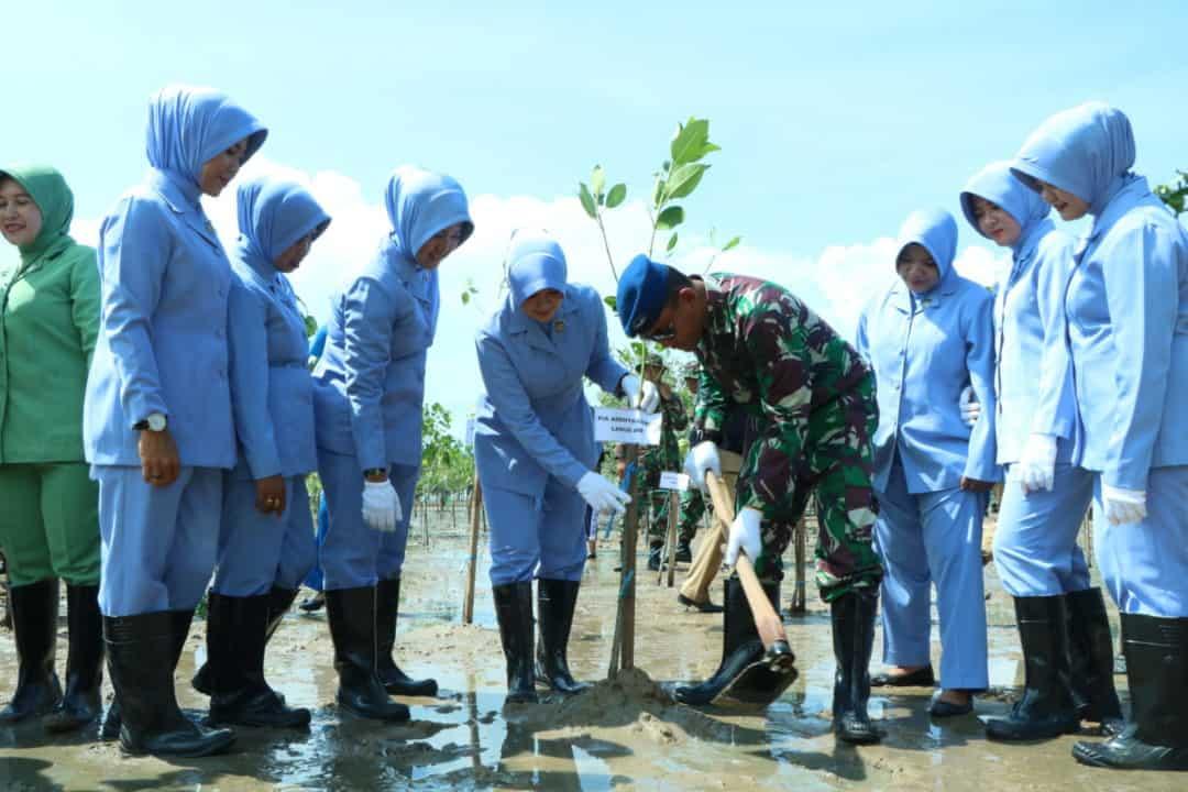 LANUD ANANG BUSRA TARAKAN BERPARTISIPASI MENANAM MANGROVE SECARA SERENTAK DI SELURUH INDONESIA