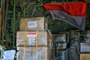Danlanud RHF Serahkan Bantuan 1 Juta Masker dari Singapura