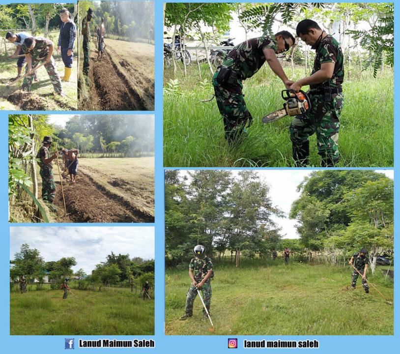 Prajurit Pangkalan TNI Angkatan Udara Maimun Saleh Kembali Membuka Lahan Baru Untuk Ketahanan Pangan.