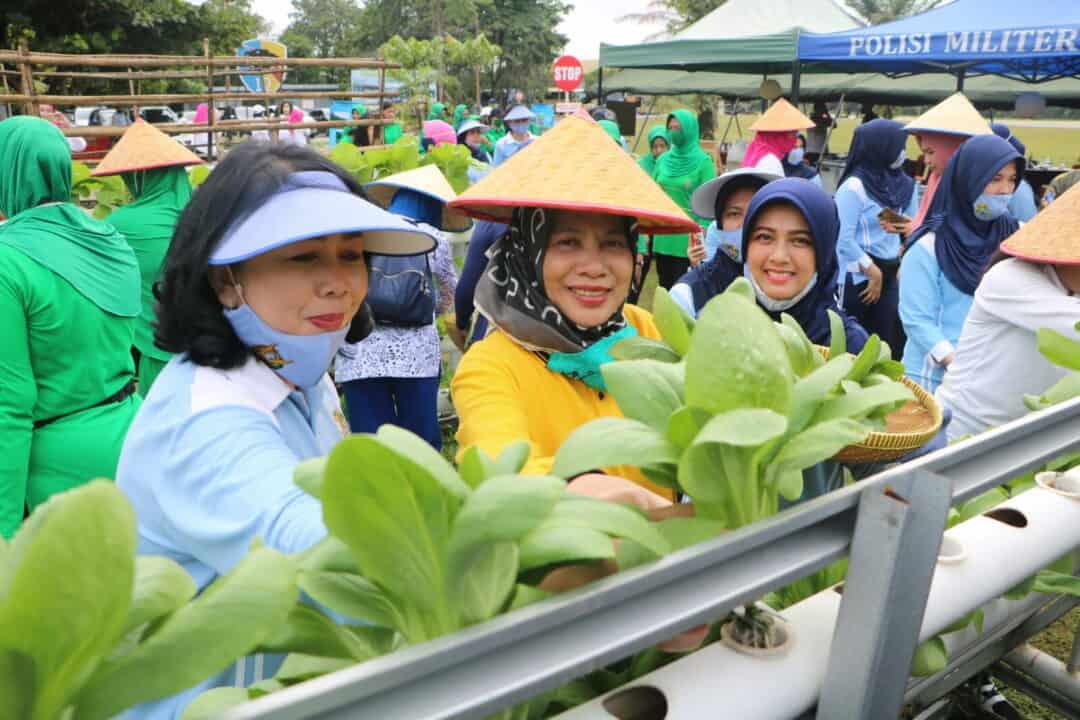Hidroponik Skadud 12 Dikunjungi DWP Provinsi Riau