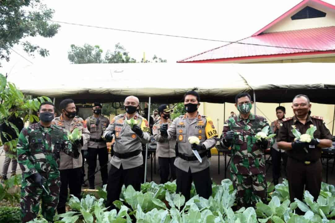 Dukung Ketahanan Pangan Komandan Lanud Sjamsudin Noor Bersama Forkopimda Kalsel Panen Ikan dan Sayuran