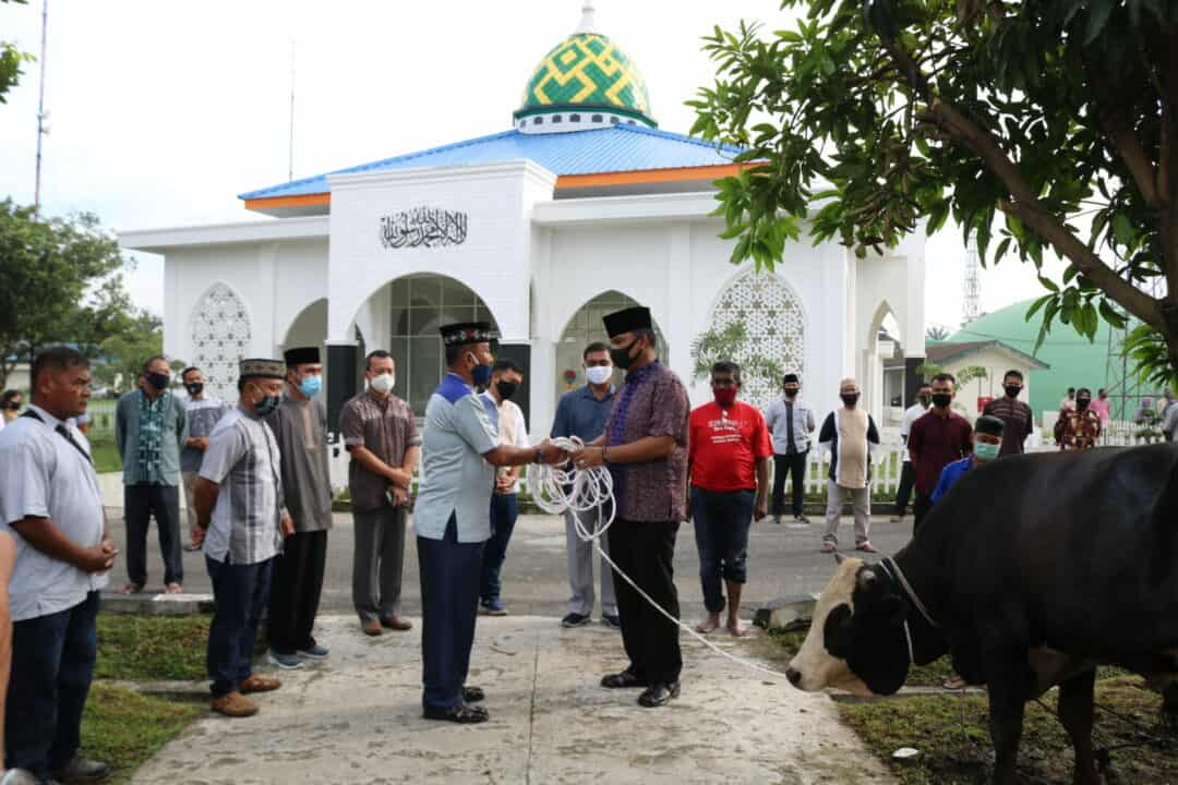 Panglima Kosekhanudnas III Serahkan Hewan Qurban
