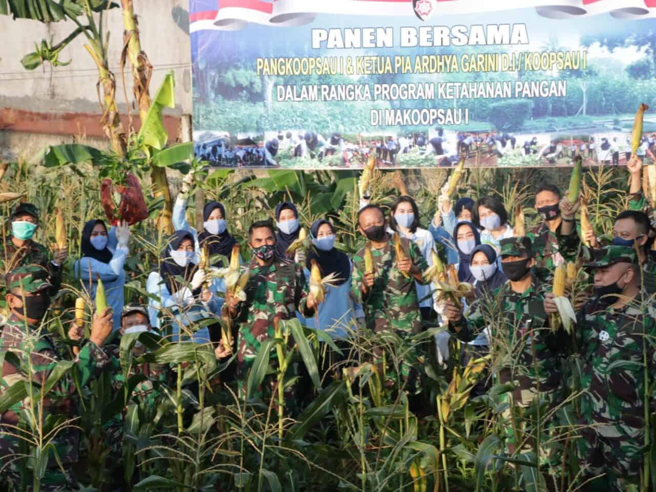 Pangkoopsau I, Panen Perdana di Lahan Ketahanan Pangan Makoopsau I