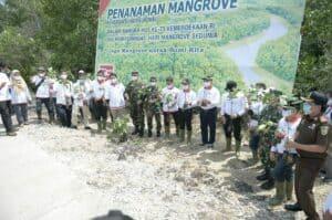 Danlanud Dampingi Gubernur Riau Tanam Bibit Mangrove
