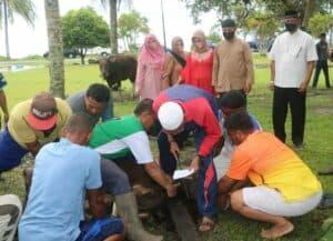 Danlanud RSA menggelar kegiatan Shalat Idul Adha dan Serahkan Hewan Kurban