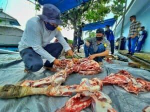 Rayakan Idul Adha 1441 H/2020M, Lanud RHF Sembelih 10 Hewan Kurban dan Bagikan ke Masyarakat Sekitar