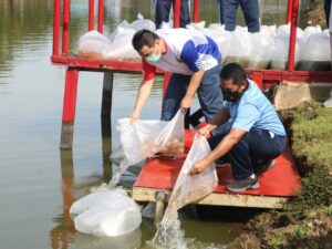 Pangkoopsau I dan Wagub DKI Jakarta bersama Anggota Lalukan Tanam Pohon dan Tebar Benih Ikan