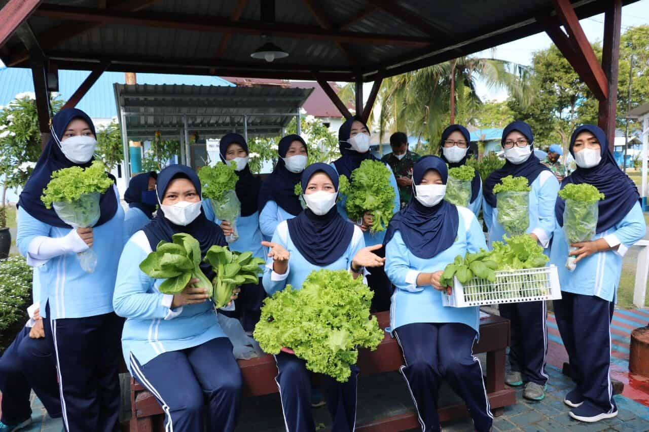 Jaga Ketahanan Pangan di Masa Pandemi, PIA Ardhya Garini Cabang 10/D.IILanud DhomberLakukan Panen Sayuran