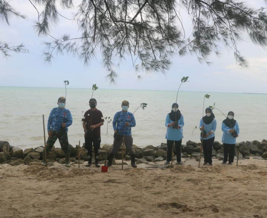 Cegah Abrasi Pantai, Lanud RSA Tanam Mangrove