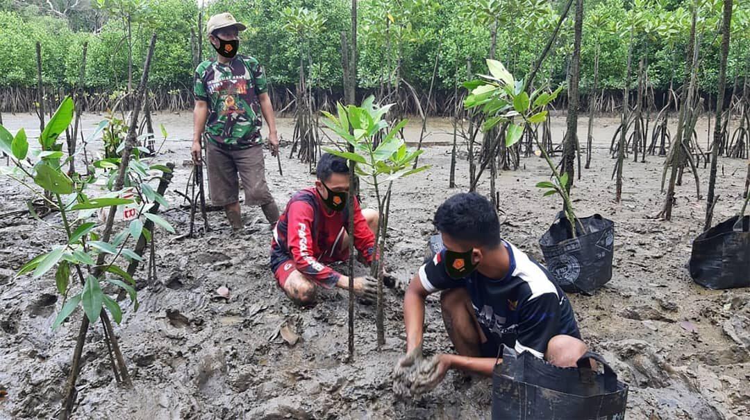 Personel Lanud Dhomber Mengikuti Pelatihan dan Penanaman Mangrove