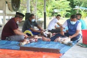 Lanud Raden Sadjad Sembelihkan Hewan Kurban dari Kasau dan Komandan Lanud RSA